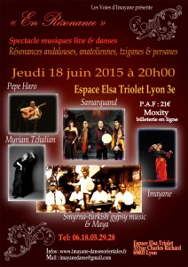 En resonance - spectacle - flamenco - danse orientale